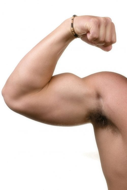 Fact or fiction: More protein means bigger muscles