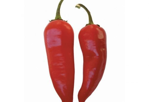 Fact or fiction: Spicy foods cause stomach ulcers 5