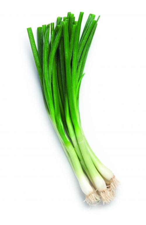 In season early autumn: Spring onions