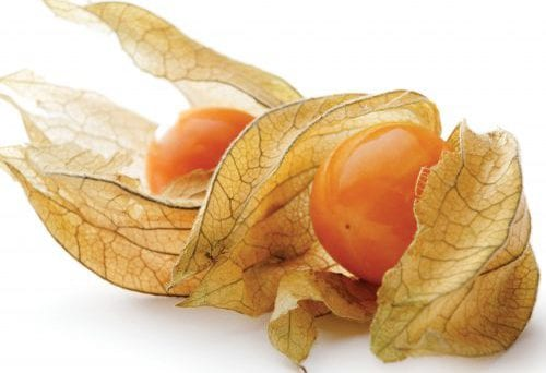 In season early spring: Cape gooseberries, coriander, gai lan 7