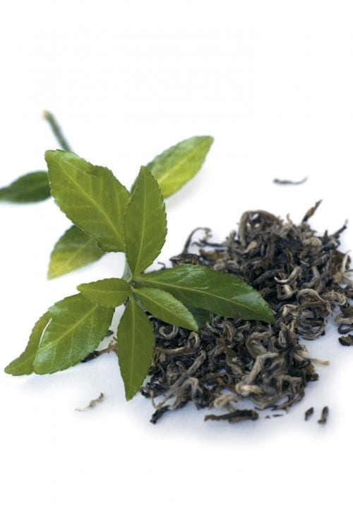 Tea: Which type is best?