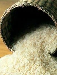 Types of rice 4